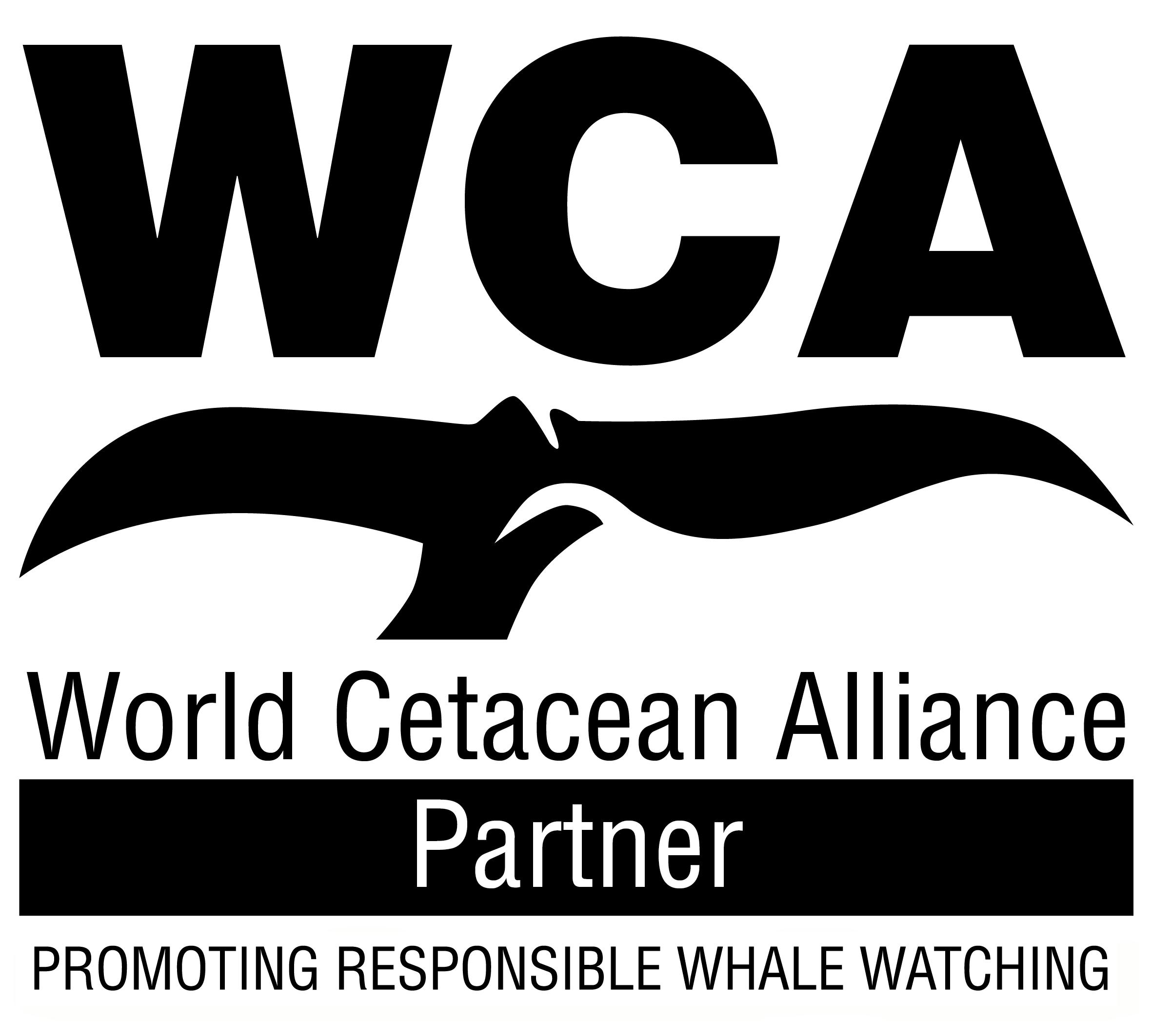 WCA partner_RWW